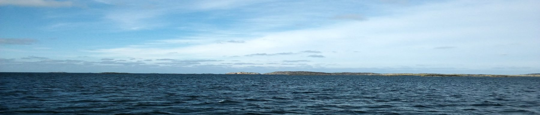 Westberg marin